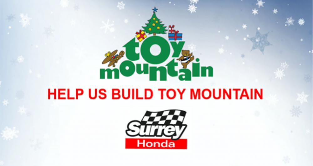 toymountain